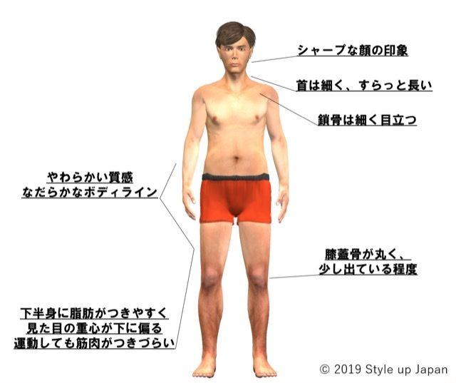 体型 ウェーブ
